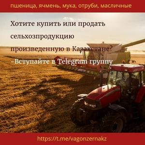 пшеница,  мука из казахстана ----  https://t.me/vagonzernakz