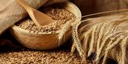 Куплю зерновые культуры!!!